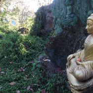 July 22-28, 2017 – Sangsurya Retreat Centre Byron Bay.