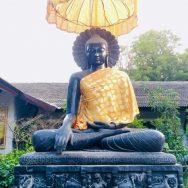 February 22nd – March 1st 2019. Royal Thai Monastery Bodhgaya, India.